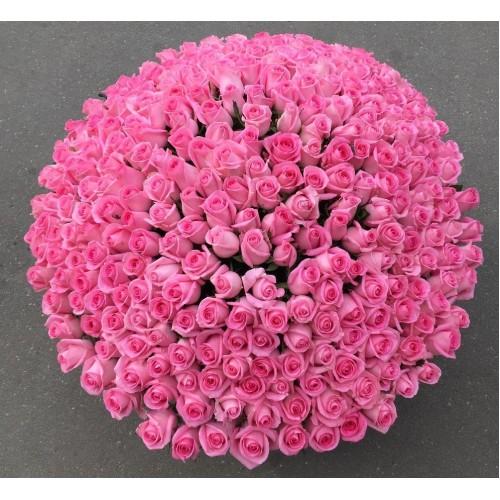 Купить на заказ 501  роза с доставкой в Шалкаре