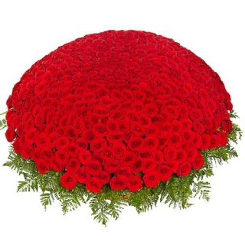Купить на заказ 301  роза с доставкой в Шалкаре